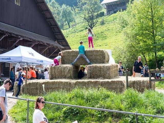 Bauernhof-ferien