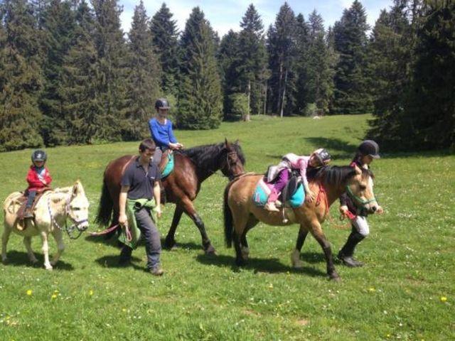 Pferd und ReiterIN, 2720 Tramelan (BE)