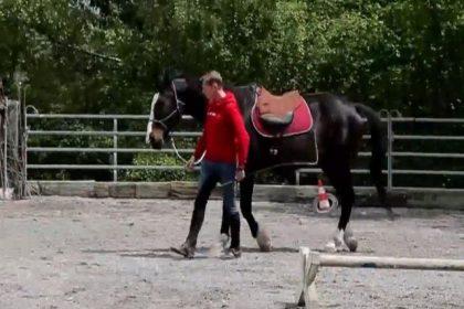 horsemanship-zug-1