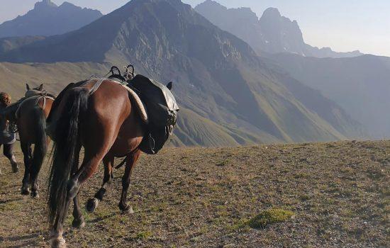 wanderreiten_kaukasus