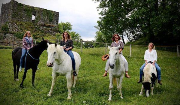 pferdegestütztes-coaching-schweiz