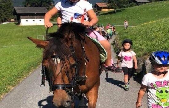 Ponyplausch Gletscherdorf (BE)