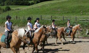 Reiturlaub in der Steiermark