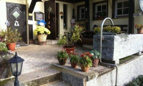 reiten-schwarzwald-4