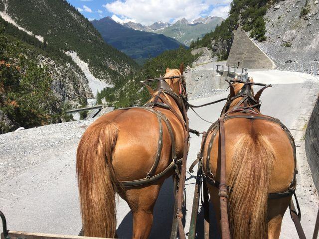National Riding Salvuns