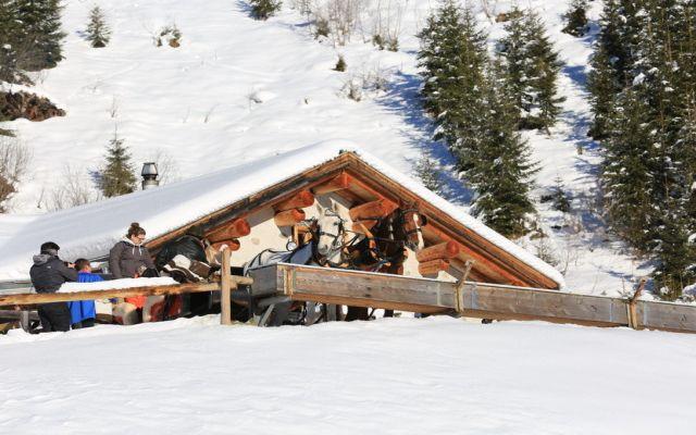 kutschenfahrten-graubünden-9