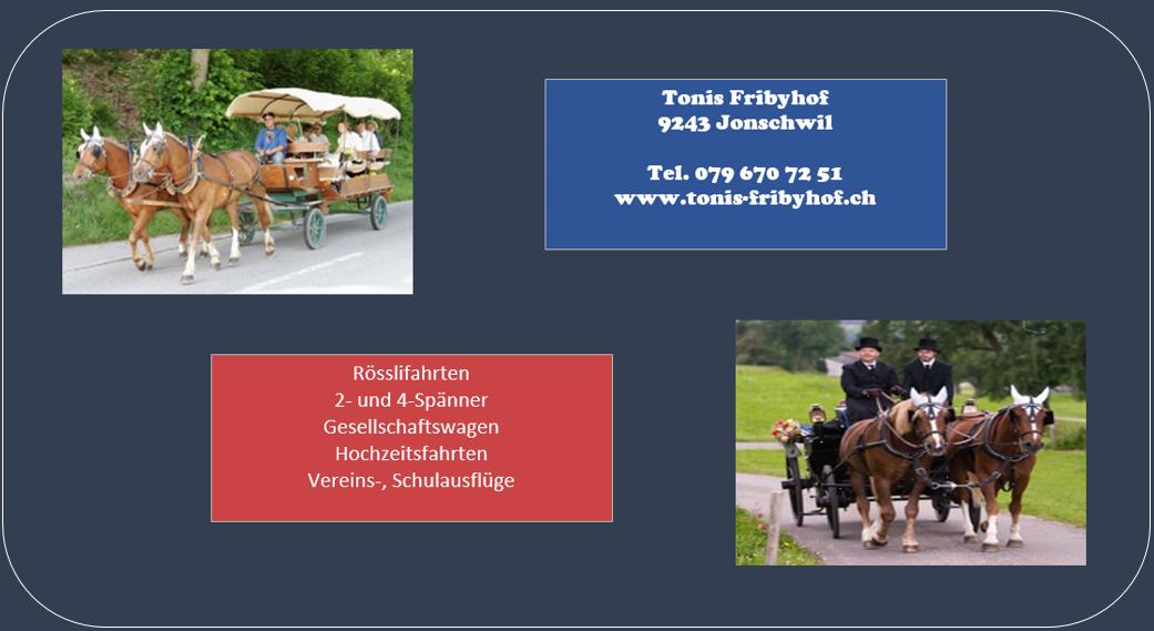 kutschenfahrten-schweiz-7