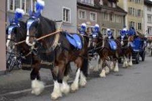 kutschenfahrten-thurgau