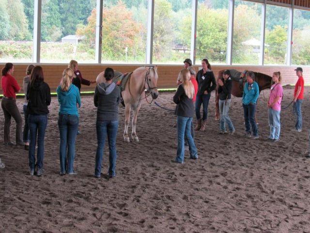 Pferde-Seminare Schweiz