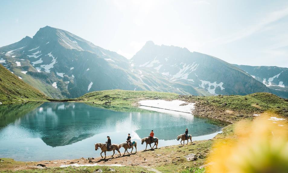 Pferdetrekking-Wallis, 3957 Erschmatt (VS)
