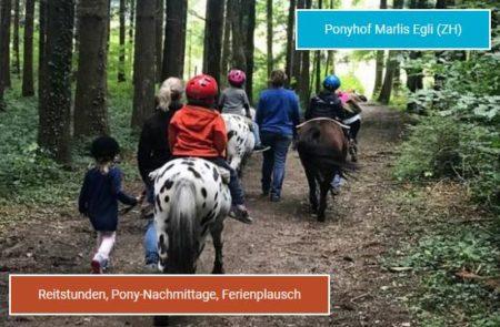 ponyhof-egli