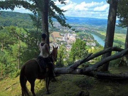 Reitangebote Aargau und weitere
