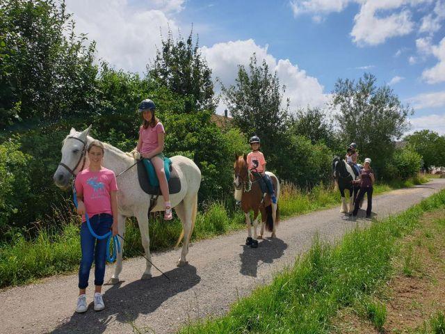 Paddock Trail, 8564 Gunterswilen (TG)