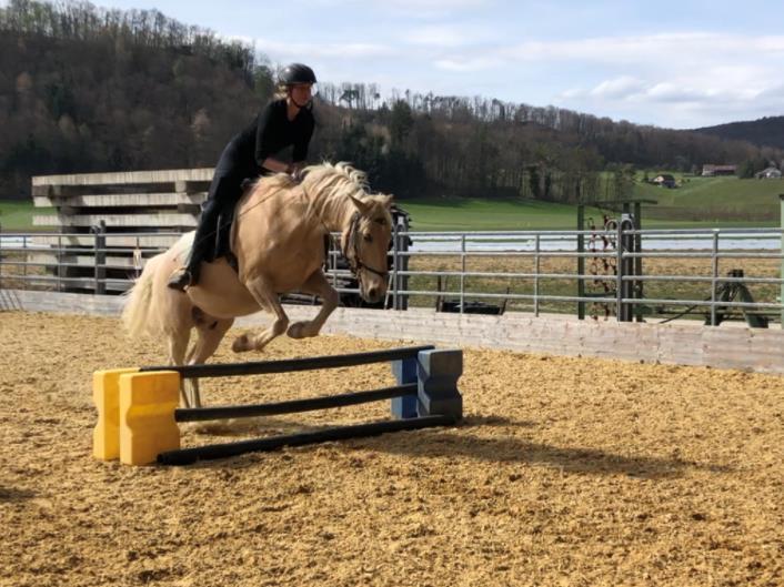 Horse Love, 5242 Lupfig (AG)