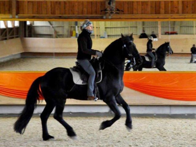 In-Balance-Pferdetraining, 8906 Bonstetten (ZH)