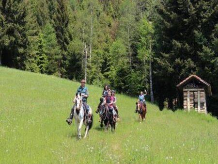 reitferien-schwarzwald
