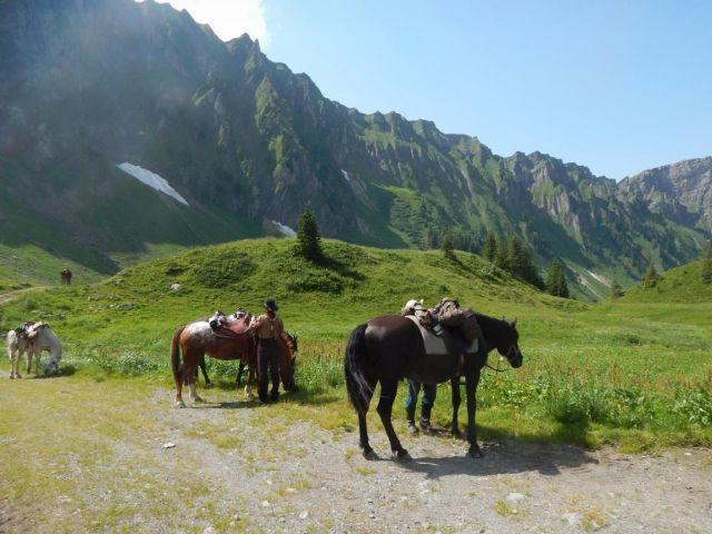 wanderreiten-alpen